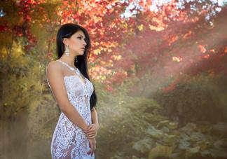Dahlia - Autumn Garden