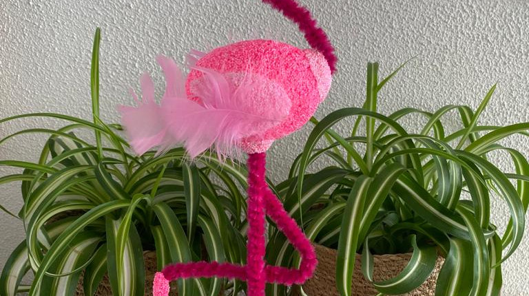 Flo Flamingo.jpeg
