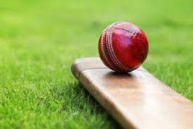 cricket im.jpeg