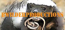 BWilderProductionsBanner1.jpg