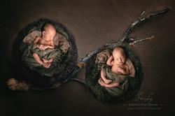 Zwillings Baby im Nest
