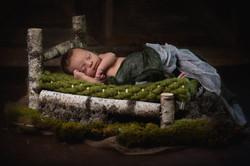 Newborn Foto im Birkenbett Nürnberg
