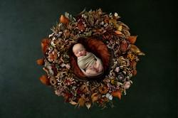 Neugeborenes Mädchen in üppigem Blmenkranz