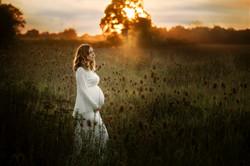 Babybauch Shooting im Sonnenuntergang
