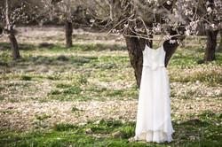 Hochzeitskleid am Mandelbaum