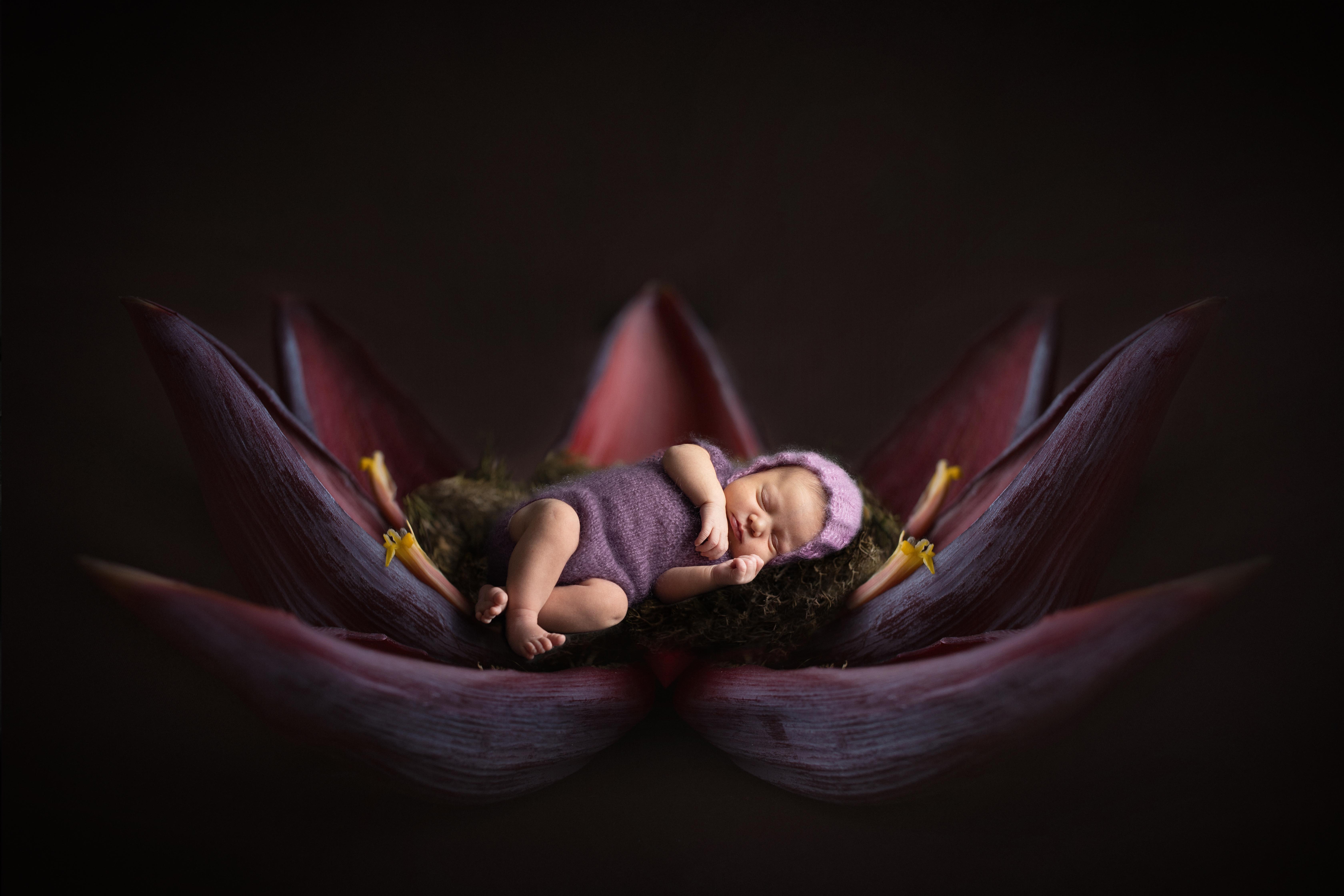 Newborn Foto in Blüte