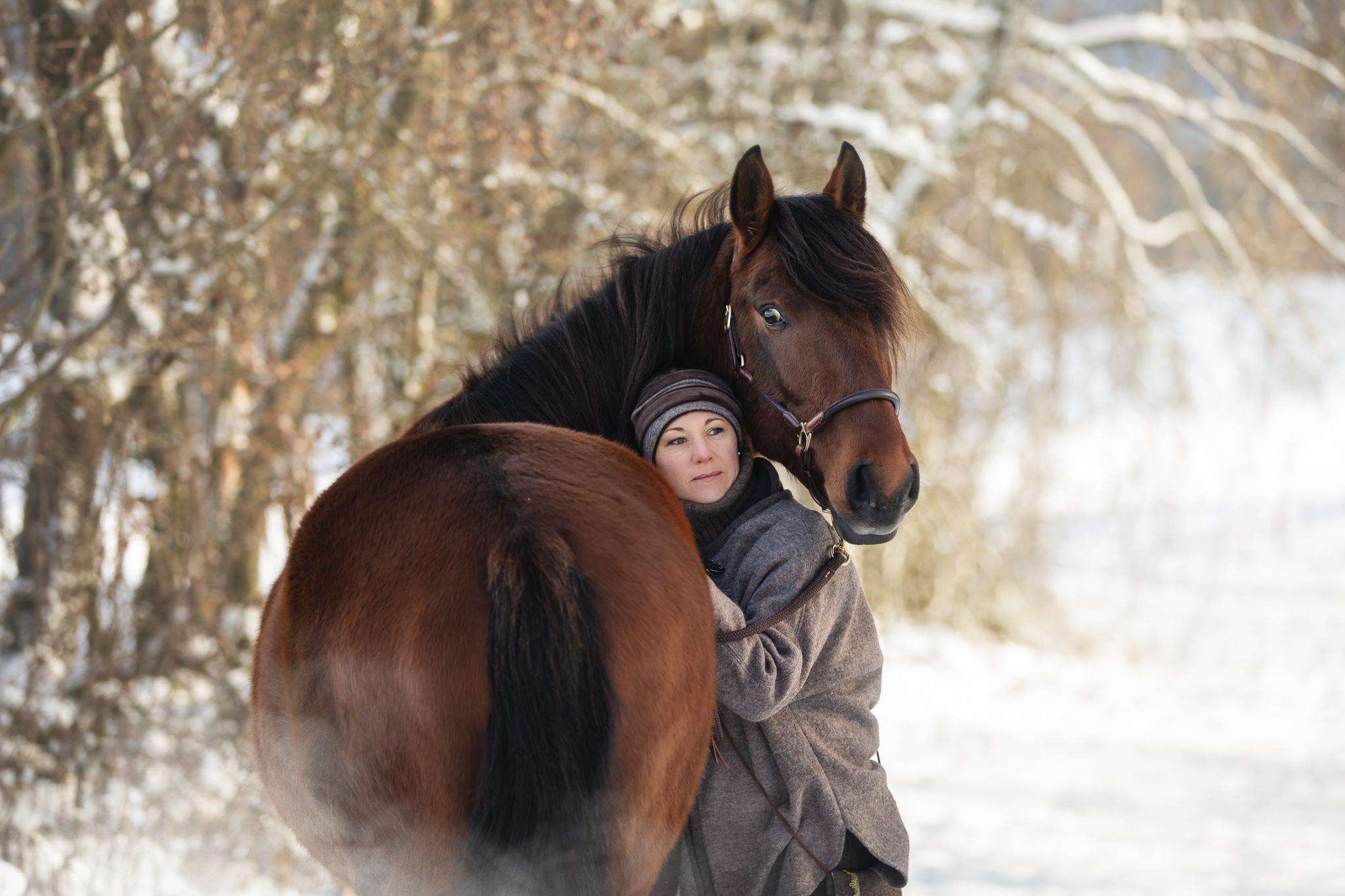 Winter Pferdefotografie