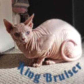 King Bruiser