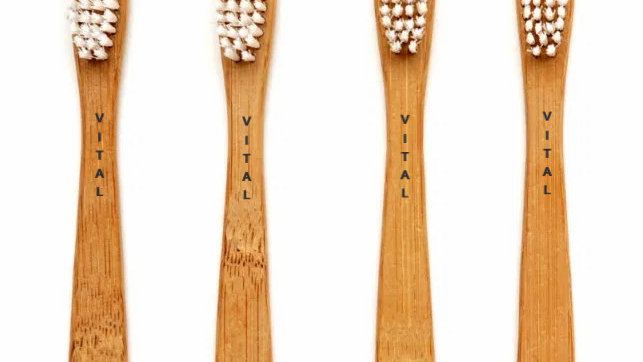 cepillo bambú   toothbrush