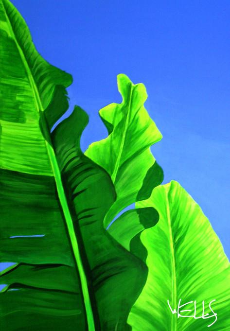 bannana leaf11.jpg