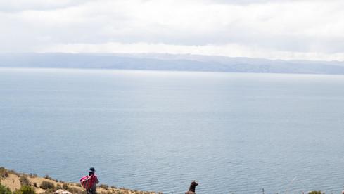 Bolivian Sea