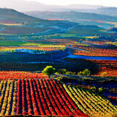 Be prepare to discover great wines along the Guadiana riverside in Portugal & Spain and taste diferent and special ones.