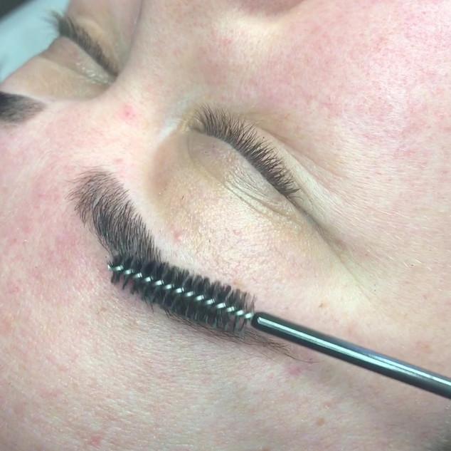 guelph eyebrow brow henna