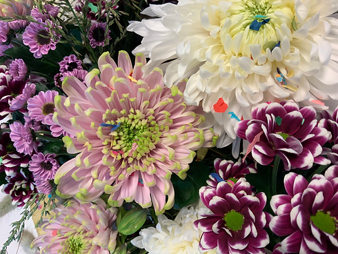 Chrysanthemum Day online Show Deliflor a
