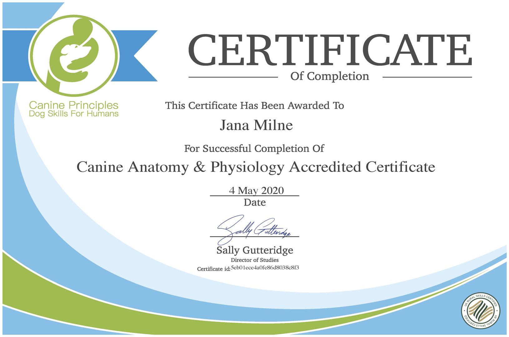 canine-anatomy-physiology-ac