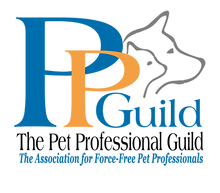 PPG Logo with tag_PPG with Tag.png