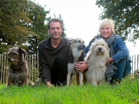 Das große Glück mit Tierschutzhunden