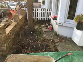 stump grinding 1.jpg