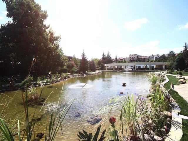 Pond & Fountain