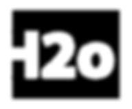 h2o logo WHITE.png