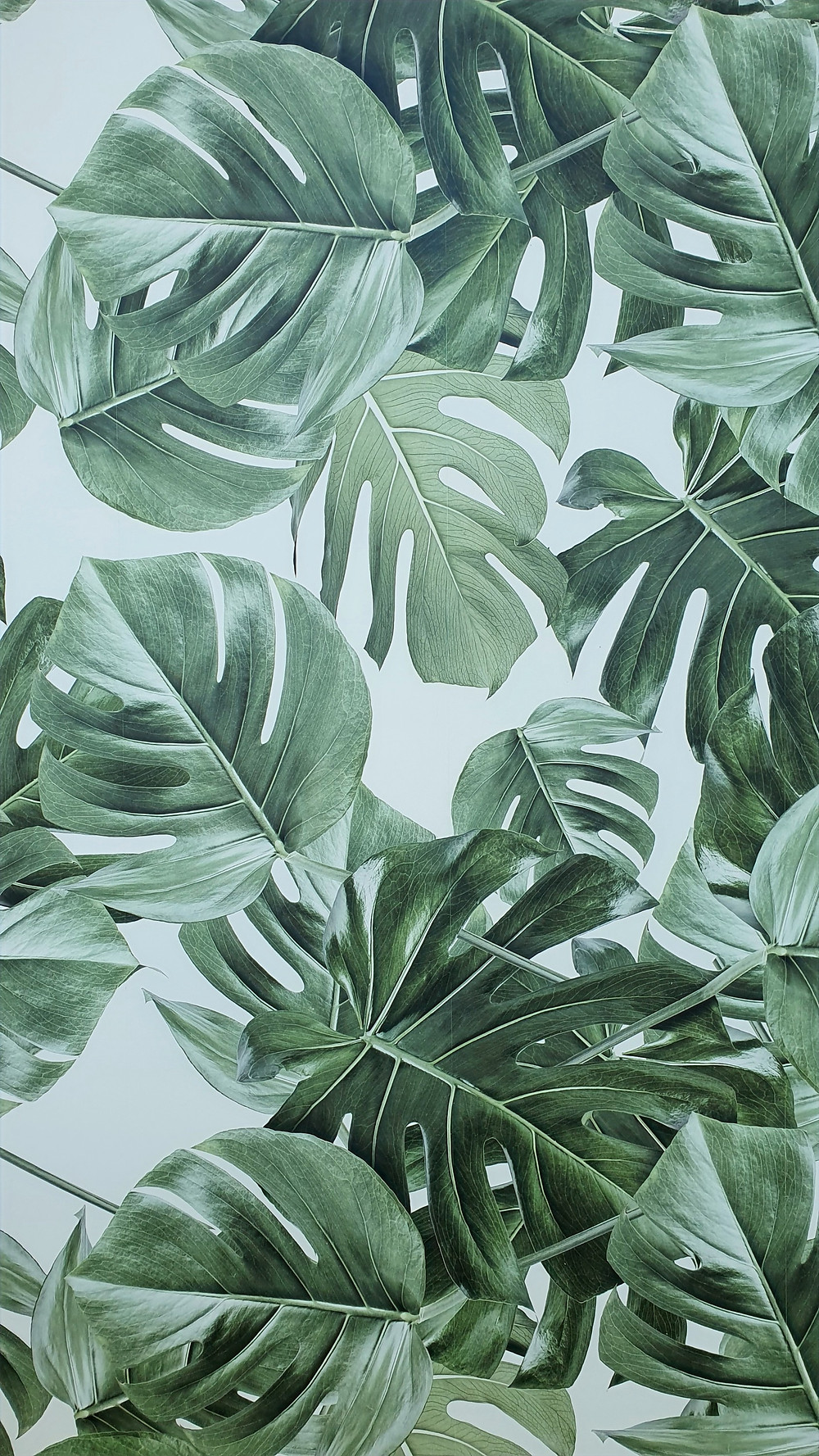 Papier peint vegetal Luxembourg
