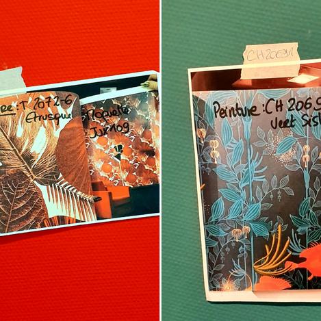 Comment réussir sa décoration avec du papier peint ?