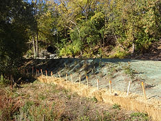 River and Shoreline Assessment