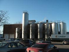 Asbestos Surveys of 5 Processing Plants Within Ontario
