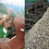 Thumbnail: Suspension Cebu - Good&Mojo