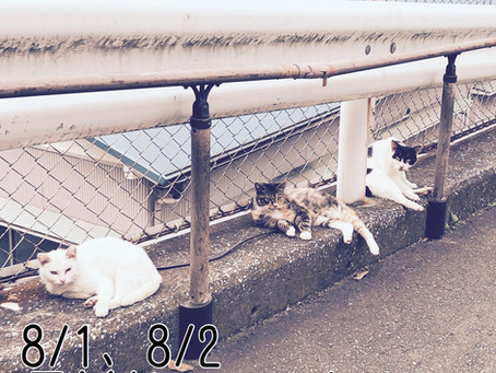 8/1、8/2、星羊社ANNEXオープン(ご予約制)