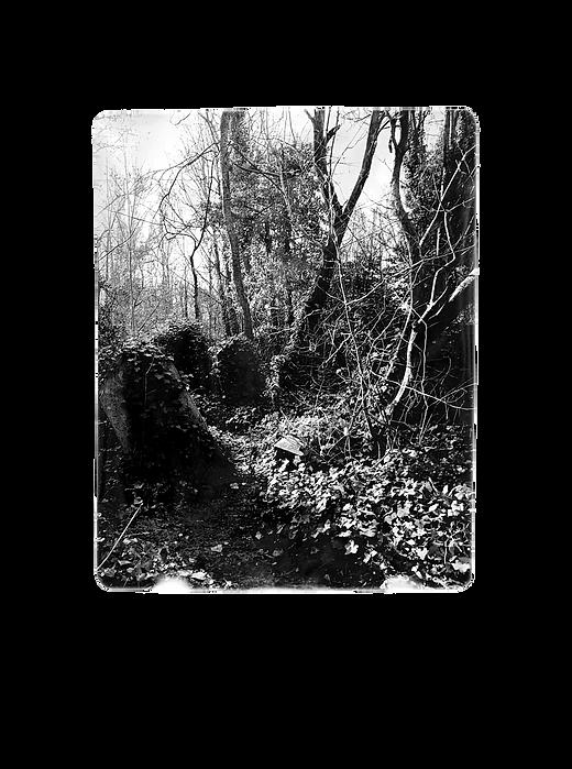 Cruising spot at Hampstead Heath