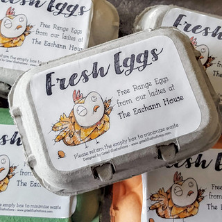 Fresh Eggs -  Eachann House