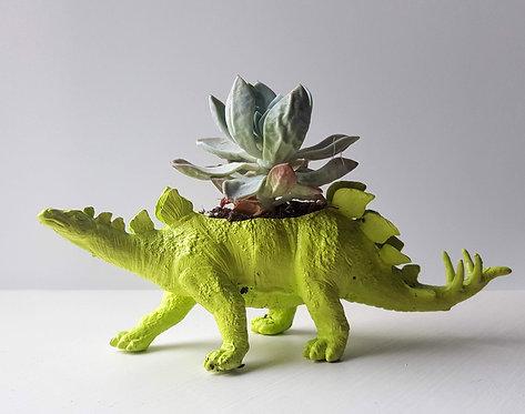 Green Stegosaurus