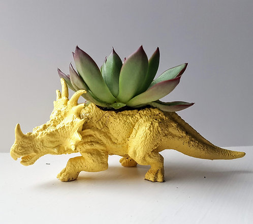 Yellow Triceratops