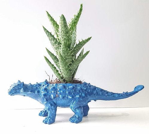 Dark Blue Dino Planter