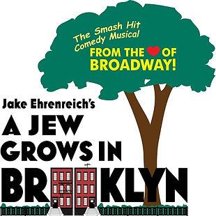 Brooklyn 500 x 500.jpg