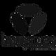 nouveau-logo-bouygues-telecom-fi7634574x