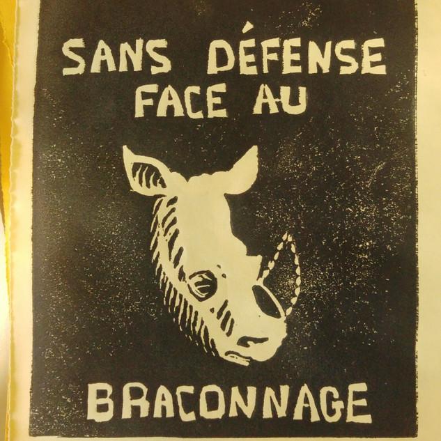 Sans défense face au braconnage by McFly-illustration