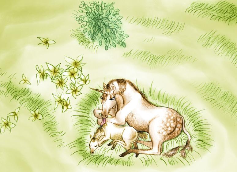 Dessin illustration licorne et son petit by McFly-illustration
