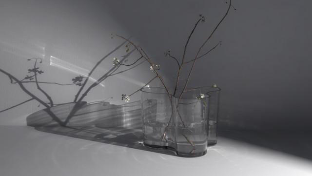 caustic effect   aalto vase