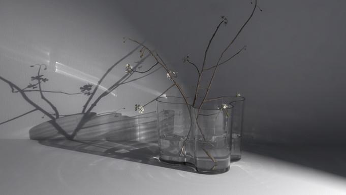 caustic effect | aalto vase