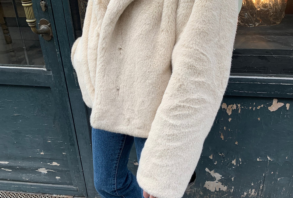 Short Faux Fur Jacket (2colors)