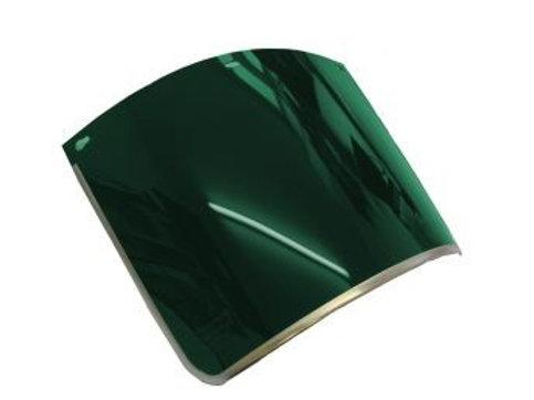 Sperian Clearways Filter (Green) Visor