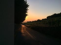 Nostra Strada (Våran gata)