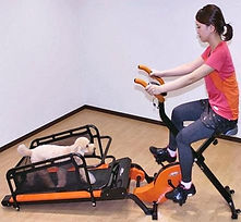 dual-dog-exercise-treadmill-lets-you-exe