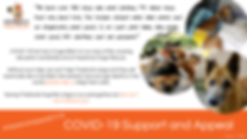 Headrock CV Appeal Banner Image.png
