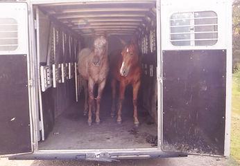 18-8-11 grayson nyce trailer.jpg