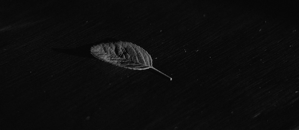 black-and-white-dark-1291515_edited.jpg