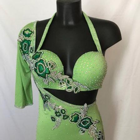 Glorious Green Bra/Dress size 10