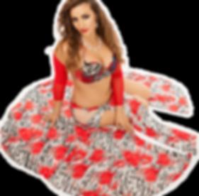 Zara Dance, Zahra bellydance, zara belly dance, Zara raqs, Egyptian bellydancer, Egypt, turkish dance, hire a bellydancer, bellydancer londo, belly dancer london, classes london, bellydance class, belly dance class, workshops, balady, baladi, saidi, shaabi
